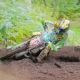 Report: Enduro World Championship – Hawkstone